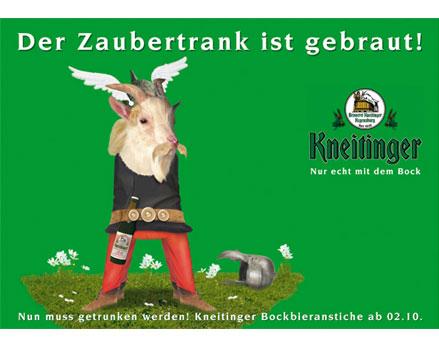 kneitinger_asterix_2008_2