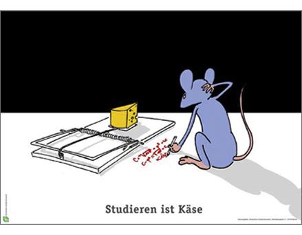 studieren-ist-kaese